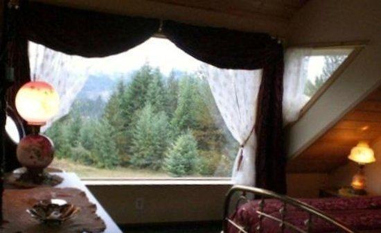 Tree Top Lodge of Idaho Bed and Breakfast: View from Upstairs Suite