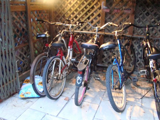 The Desoto Inn: Bicycles