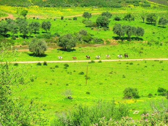Villa Feliz Apartments: Horse riding in the mountains