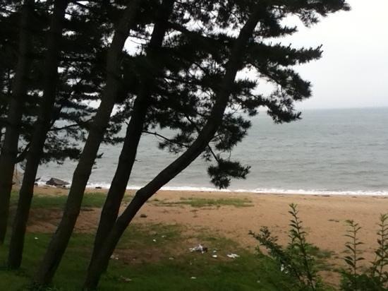 Benikea Hotel Oceanside: beach across the street