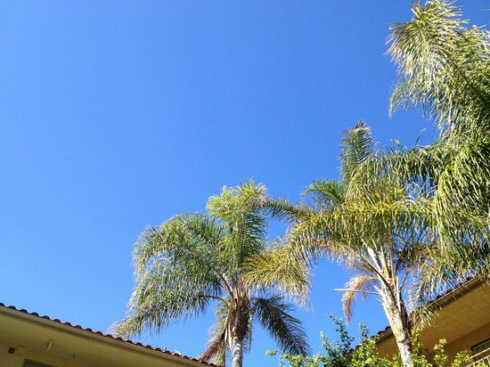 Holiday Inn Express Simi Valley : Blue Skies - Poolside