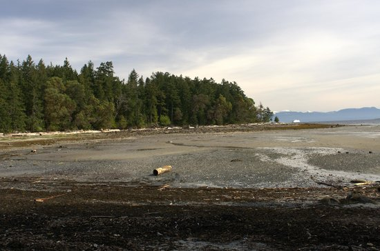 Nanaimo, Canadá: One of the many bays