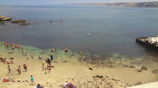 La Jolla Cove: Waters perfect for snorkeling