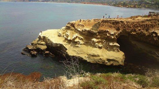 La Jolla Cove: Here is the cavewe snorkeled too