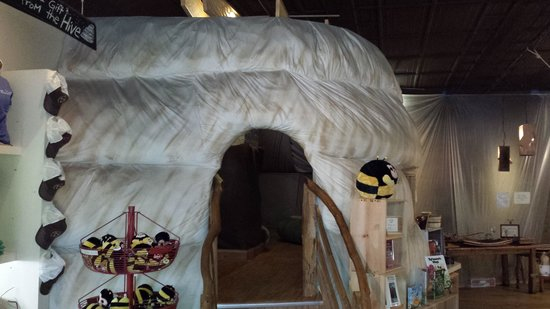 Savannah Bee Company: Beehive