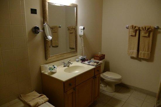 Mill Creek Hotel: Bathroom