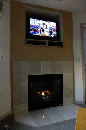 Mill Creek Hotel: Fireplace & TV