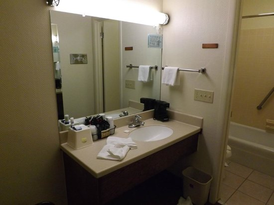 BEST WESTERN Plains Motel: Bathroom sink