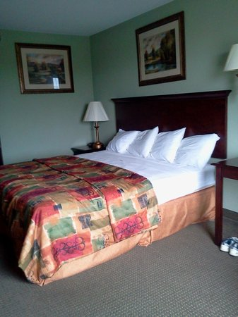 Super 8 Rainsville: King Bed