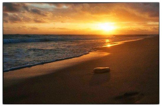 Excellence Punta Cana: Sunrise