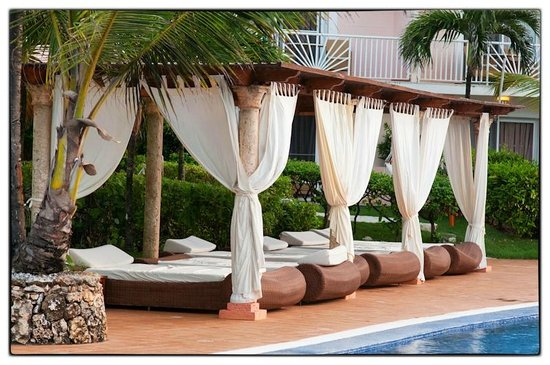Excellence Punta Cana: Poolside Beds & Poolside Beds - Picture of Excellence Punta Cana Punta Cana ...