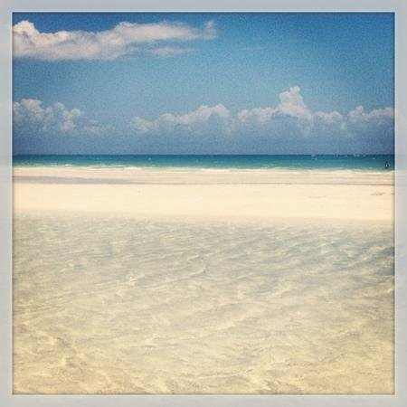 Lucayan National Park, Grand Bahama Island: this beach was amazing... heaven is right!! love u Bahamas:)