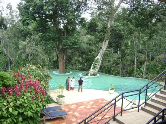 Swimming Pool Surrounded By Greenaries Picture Of The Windflower Resort And Spa Coorg