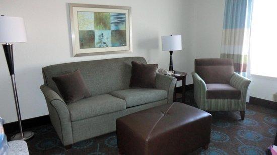 Hampton Inn & Suites Newport News (Oyster Point) : Room 401