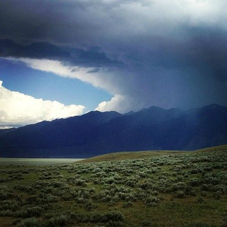 On the property at Wilderness Edge: Storm Brewing