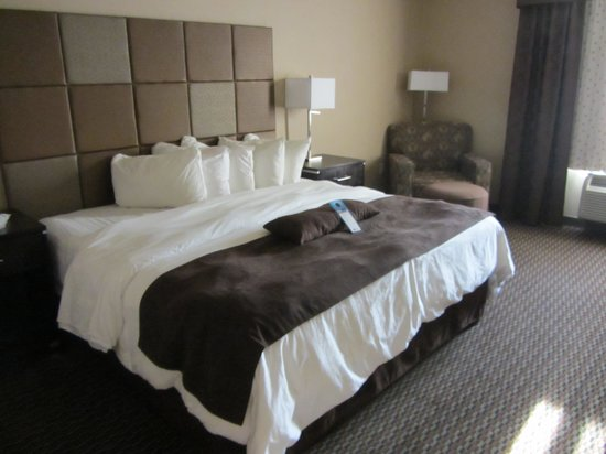 BEST WESTERN PLUS Wine Country Hotel & Suites: King bed