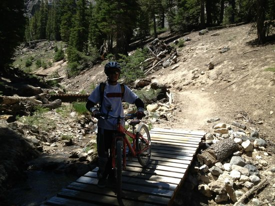 Mammoth Mountain Bike Park: 7 Bridges trail
