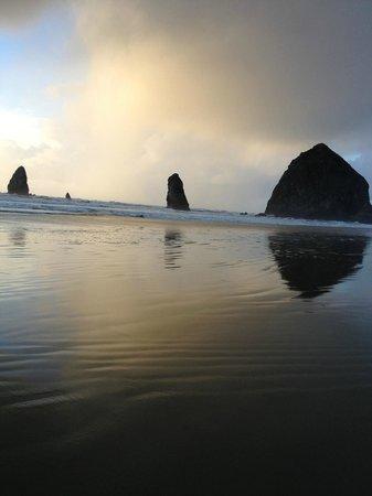 ذا وايفز / ذي أرجوناوتا إن / ذا وايت هيرون لودج: A short walk down the beach from The Waves