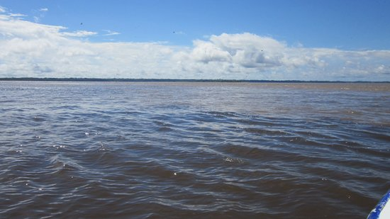 Amazonia Expeditions' Tahuayo Lodge: Entering the mighty Amazon River