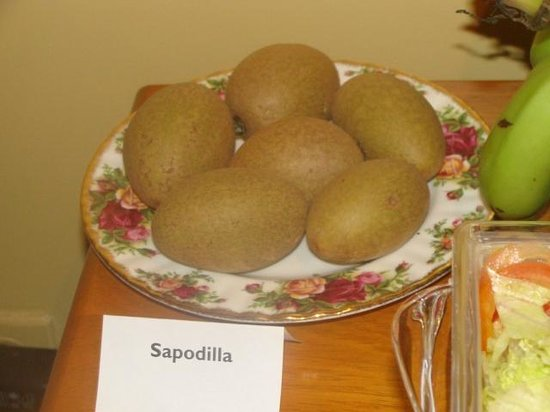 Native Abode: breakfast-sapodillas