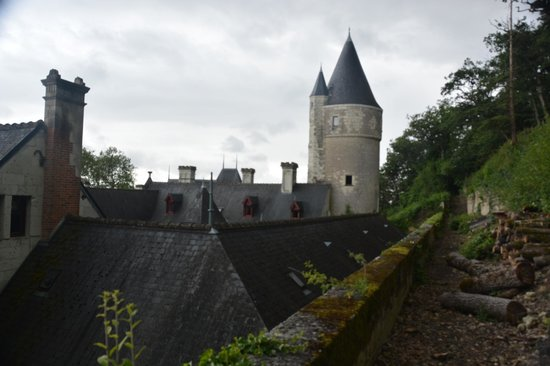 Chateau de Chissay: Castle from the woods behind