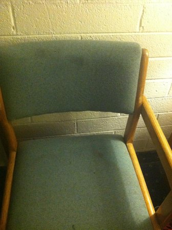 Budget Host Inn Williams: chair is dirty and filthy. I could not even sit in them, disgusting!!