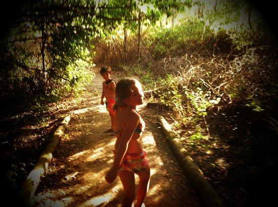 BIG4 Porepunkah Holiday Park : secret garden