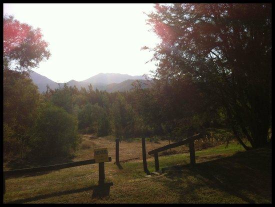 BIG4 Porepunkah Holiday Park : view