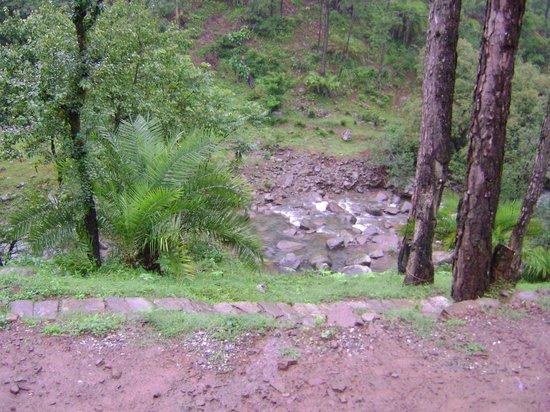 Camp Roxx: River