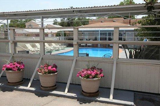 Monterey Non-Smokers Motel: view of pool