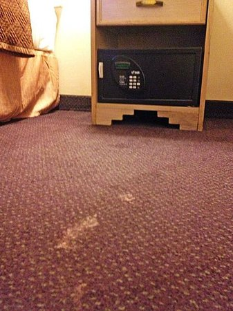 Travelodge Gallup: These carpet issues came free with the room price.