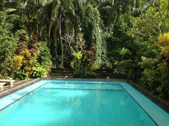 Kajeng Bungalows: nice pool