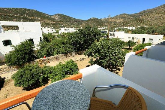 Benakis Hotel: garden view