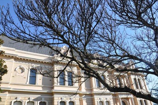 Queen Victoria Museum & Art Gallery: QVM Art Gallery