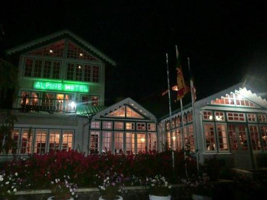 Alpine Hotel: hotel