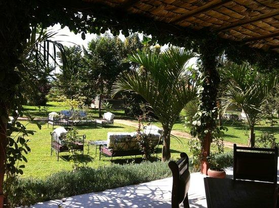 Planet Lodge: Garden sitting area
