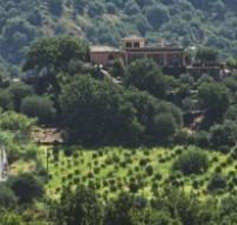 Il Poggio Country Resort: the area