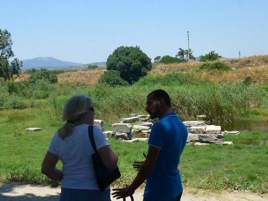 Tayf Tours: Ephesus Turkey