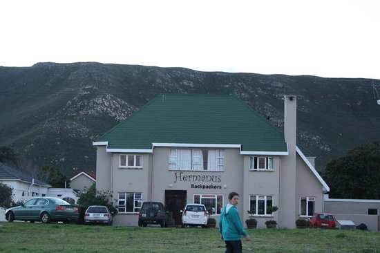 Hermanus Backpackers : The place