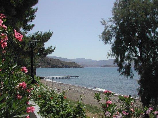 Delfinia Hotel & Bungalows: own beach