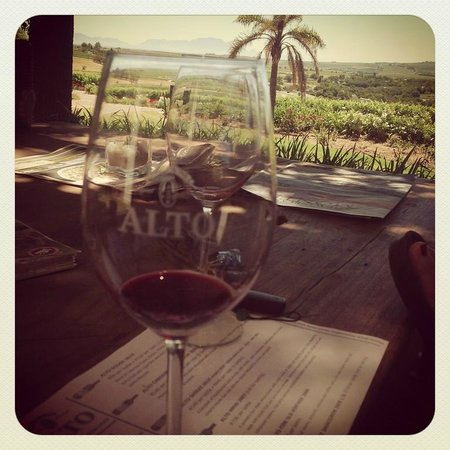 Alto Wine Estate