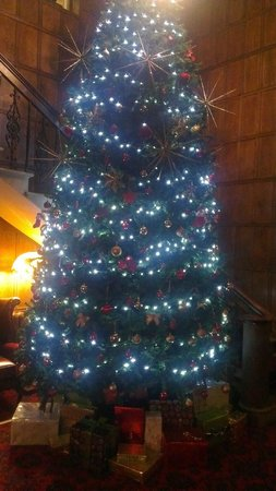 The Upper House: huge Xmas tree by the staircase