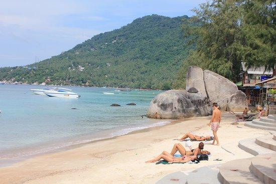 AC Resort: Beach at AC lodge