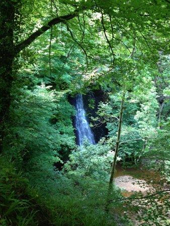 Falling Foss Tea Garden and Waterfall: Falling foss