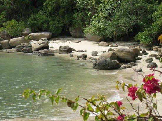 East Bedarra Island Retreat: Beach