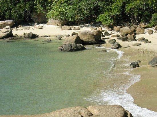 East Bedarra Island Retreat: View of beach