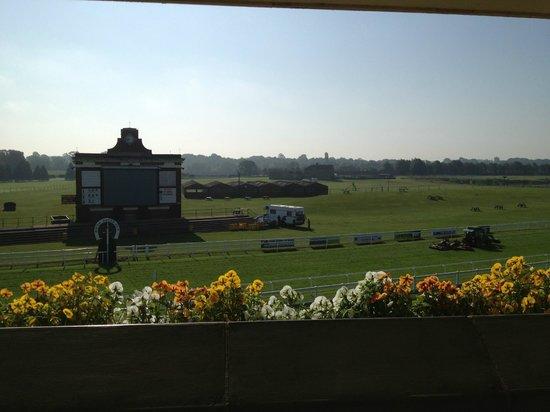 Ripon Racecourse: The View