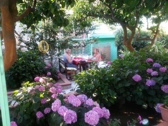Hotel Ristorante La Rondinella Baia di Sorgeto: Üppiger Garten