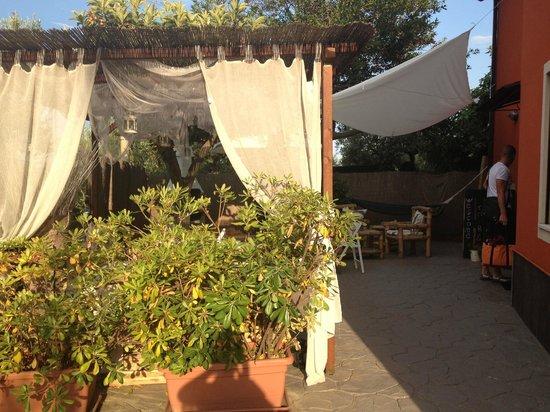 Villa Paladar B&B: Outside area