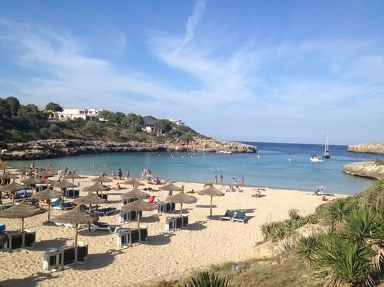OLA Aparthotel Cecilia: la plage à 200 mètre de l'hôtel